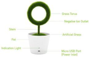 Planta purificadora detalles - RG regalos